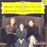 Обложка альбома «Piano Trios Nos. 1 & 2. Pires. Dumay. Wang» (Brahms, 2006)