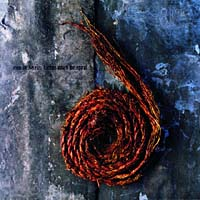 Обложка альбома «Further Down The Spiral» (Nine Inch Nails, 2006)