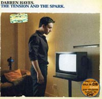 Обложка альбома «The Tension And The Spark» (Darren Hayes, 2004)